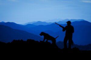 Predator Hunting Lights