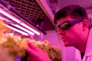 the best UV Light for HVAC system